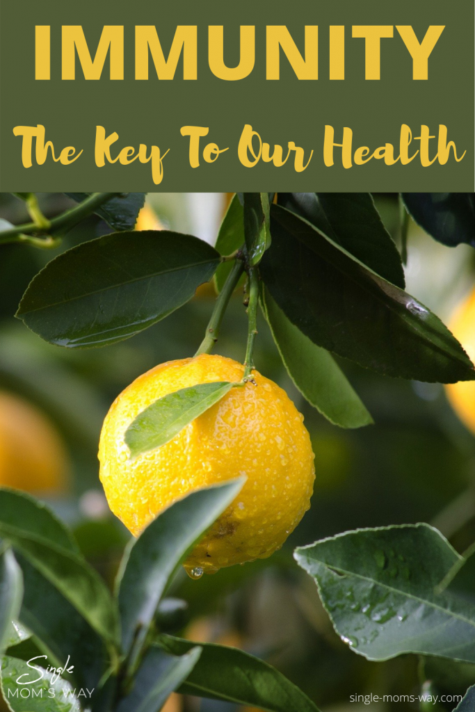 Immunity – The Key To Our Health